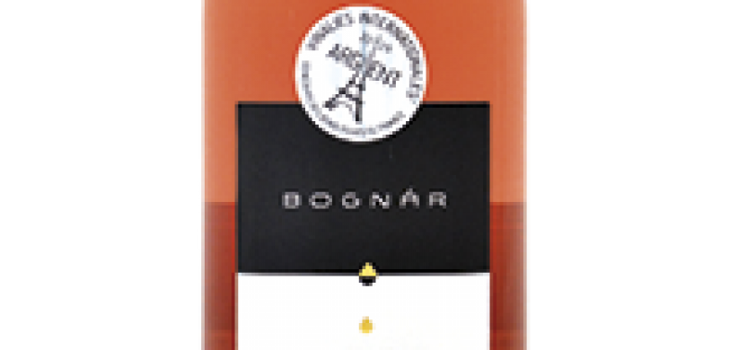KV-bognar-csr-2018-suche