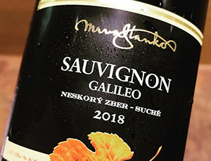Mrva & Stanko - Sauvignon Galileo