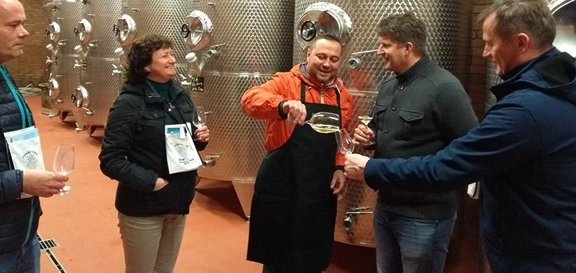 Bita - Jánske vína