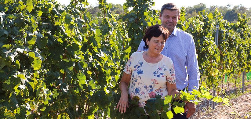 Manželia Margita aLadislav Šebovci vmodranskej vinici nad Kalváriou.